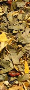 Schlaumeier Kräutermischung mit Ginkgo Bio